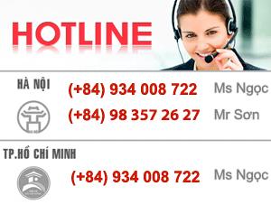 vietnam detective hotline